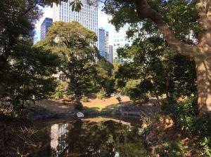 Hamarikju Gardens, site of Shogun Tokugawa family 17century residence.